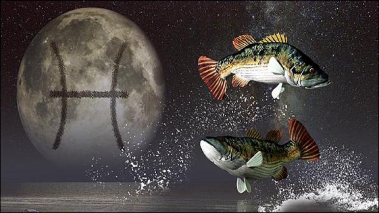 مولود برج الحوت اليوم الجمعة 3-7-2020 مهنيا وعاطفيا ، مواليد برج الحوت اليوم 3\7\2020 الحب والعمل
