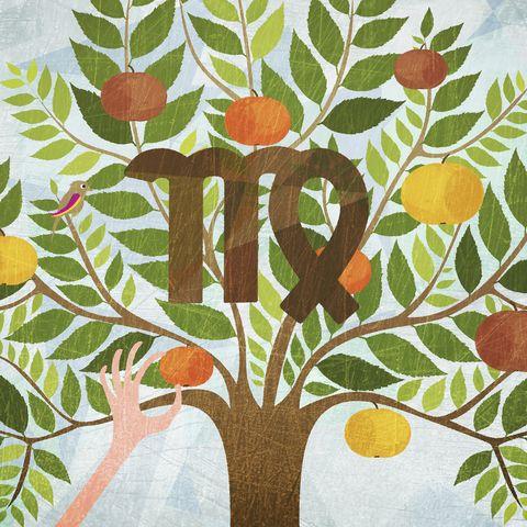 مولود برج العذراء اليوم الأربعاء 15-7-2020 مهنيا وعاطفيا ، مواليد برج العذراء اليوم 15\7\2020 الحب والعمل